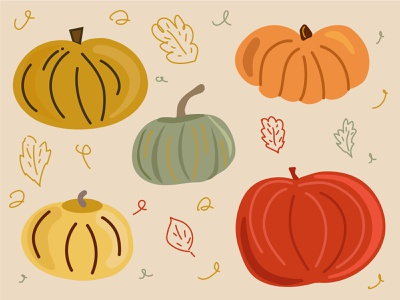 Pumpkin pumpkin autumn illustration 2d vector adobe illustrator