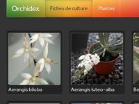 Orchidex