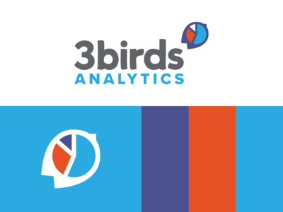 3 Birds Analytics