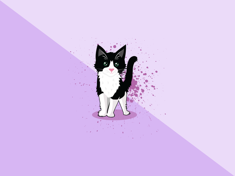 Cat Portrait vector illustration design