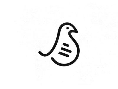 Bird Icon bird logo bird icon bird icon