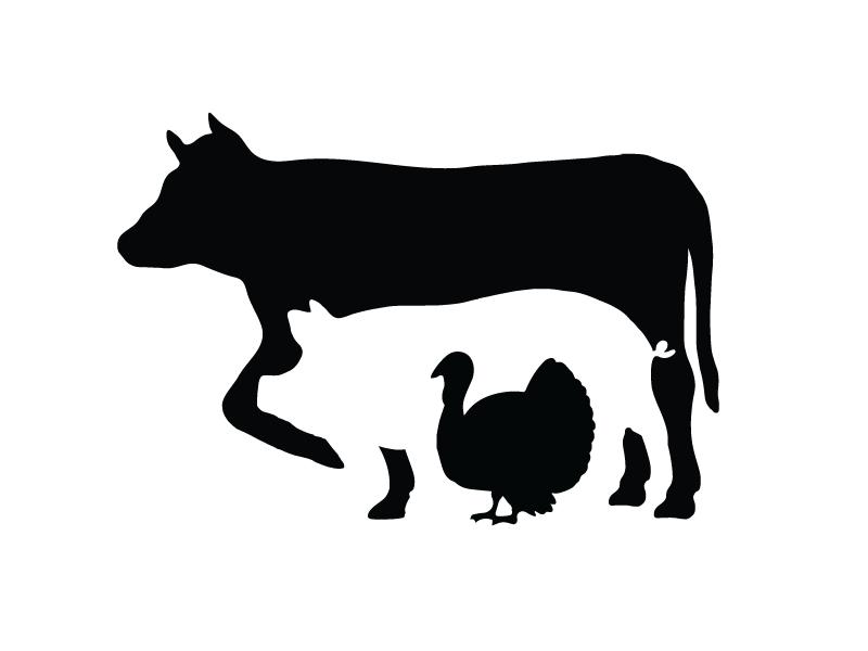 Central Coast Meat Market turkey pig cow bbq butcher meat animals logotype logo identity branding