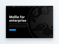 Mollie for enterprise