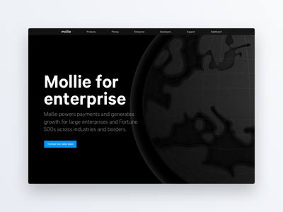 Mollie for enterprise enterprise line svg globe animation web ui interface mollie page website