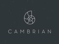 Cambrian Mark
