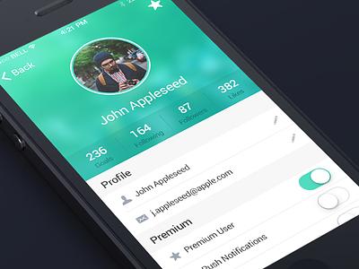 Settings app ios flat settings profile ui iphone blur design ux