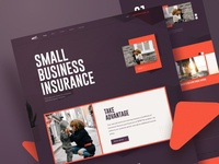 Next Insurance | Website Design Concept