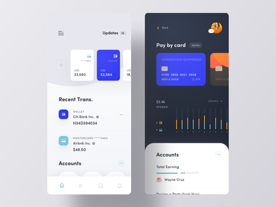Account Manager iOS App Concept payment pay credit card card app design ios app design chart grid list transaction finance account app ui ios app