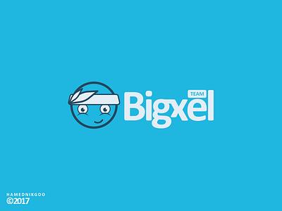Bigxel team iran group experience interface animation illustration logo