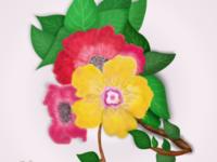 Flower 🌺🌷🌸🌹