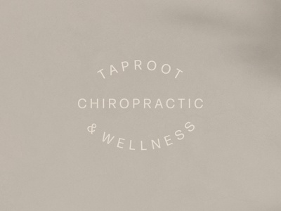 Brand Identity for Taproot Chiropractic design logo handmade hand drawn graphic design collateral branding brand identity