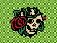 Skull/Rose illustration