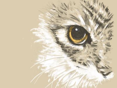 Lilica digital drawing digital painting sketchbook illustration cat drawing krita pencil drawing sketch cat