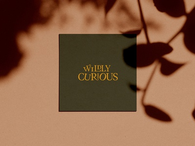 Wildly Curious Co
