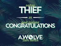 Thief Congratulations