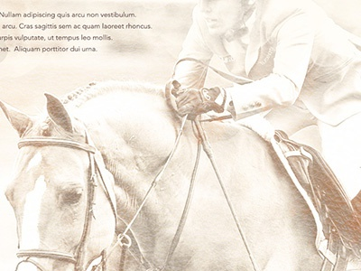photo retouching photo retouching photoshop retouching horse welcome page