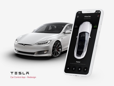 Tesla Car Control App