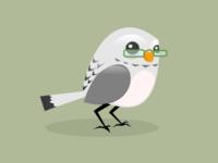 Owlie Specs