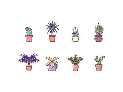 Plants garden tree leaf palm cactus aloe houseplant plant