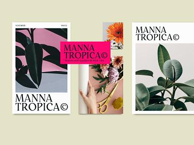 Restora Typeface - 2 FREE FONTS magazine cover brand display fonts serif fonts free fonts typeface type design typography branding magazine