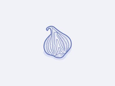 Onion illustration etching engraving bulb onion alliumcepa veggies vegetarian veganfood icons iconography icondesign