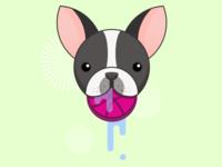 Dribbble Dog