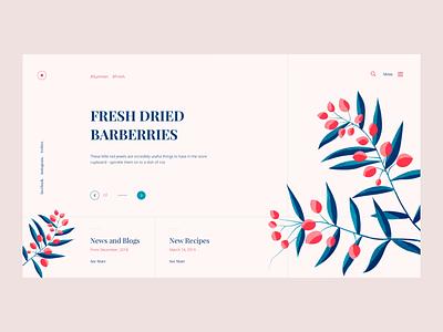 Fresh Barberries animation ux ui web vector color illustration design