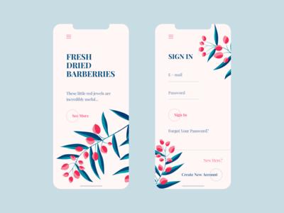 Fresh Barberries - Mobile Design
