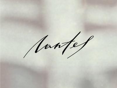 Nantes calligraphy lettering logo brand branding