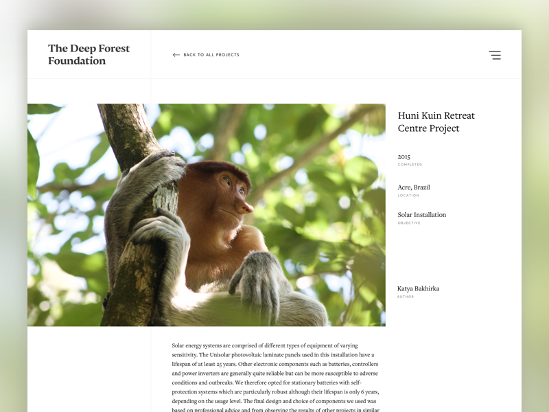 Deep Forest Foundation Project View minimal grid web design