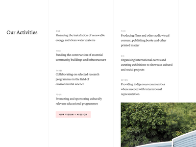 The Deep Forest Foundation activities page white space clean minimal grid web design