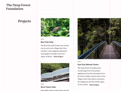The Deep Forest Foundation grid view white space clean minimal grid web design