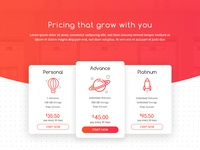 Pricing Plan Hosting