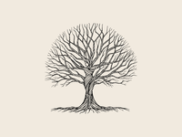 Oak Tree's Gift illustration