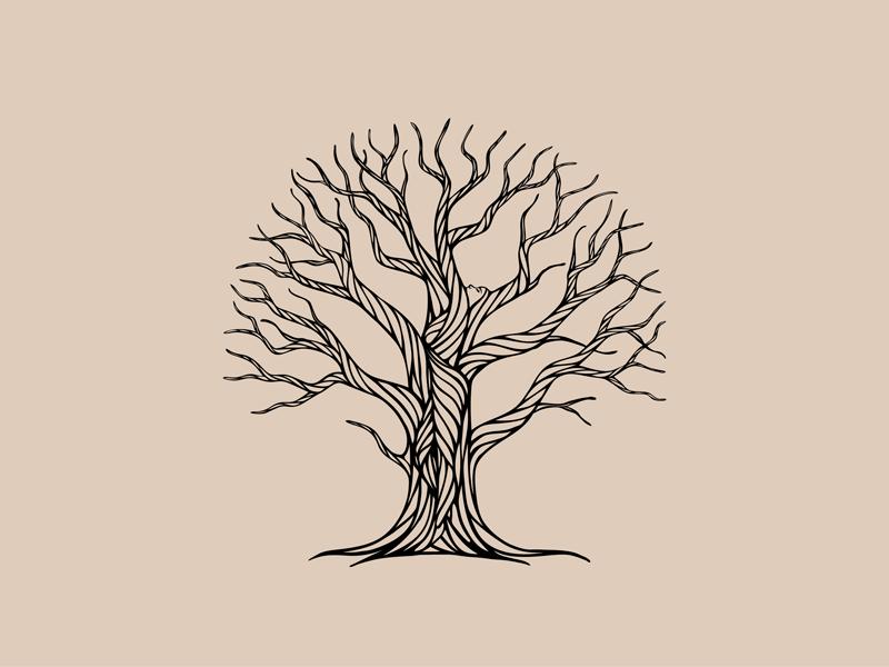 Rainbow Gum's Gift illustration line art woman vector treewoman tree nature illustration hand-drawn