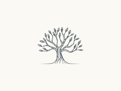 Real Value Capital - Logo design