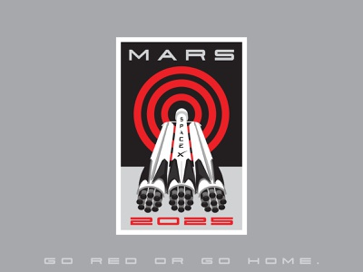 Space Mission Patch: Mars 2025 badgedesign patch branding badge spaceship space mars