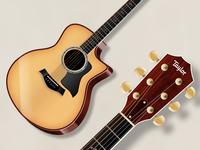 Acoustic Garageband Icon