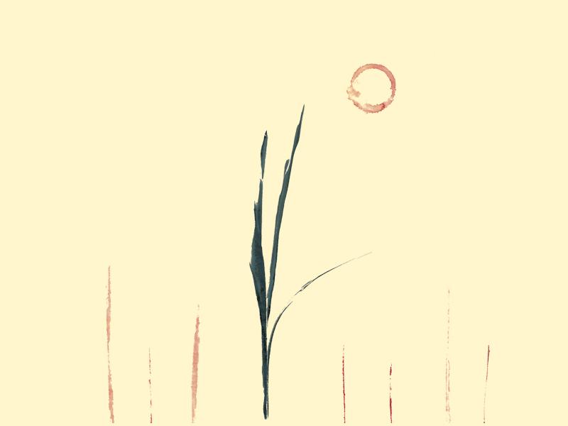 Book Cover WIP digital collage editorial design illustration design
