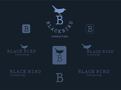 Black Bird Consulting Logo Identity graphic design identity logo design logodesign icon branding design clean brand minimal logo
