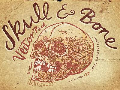 Skull And Bone Vector Pack human skull skulls crossbones bone skull pack vector illustration horror halloween