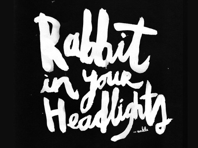 Rabbit In Your Headlights typeface fonts typography watercolour brush lettering