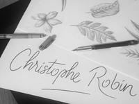 // Packaging Artwork for Christophe Robin //