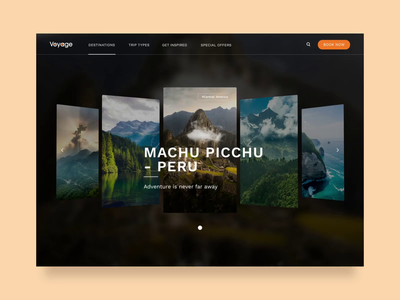 Voyage travel website product design website webdesign selection slider scroll alps interaction video animation gallery cards booking nature mountains voyage travel design ux ui