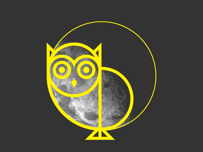 Owl and the Moon owl night moon illustration graphic design geometry geometric design bird artwork art animal