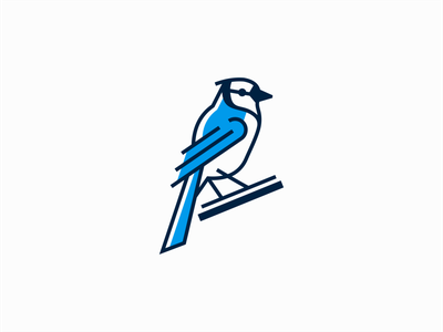 Blue Jay Logo for Sale icon emblem unique premium modern nature jay blue jay bird lines flat illustration sale geometric animal vector mark design branding logo