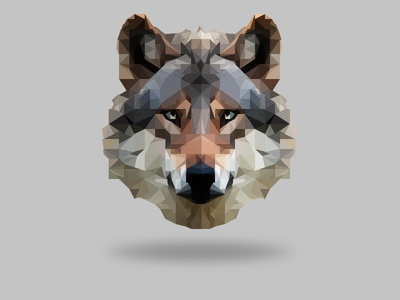 My first Low Poly :) lowpoly design wolf triangle