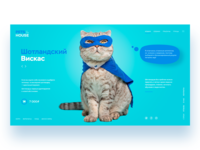 Pets in the house web design uidesign cat webdesign ui ux