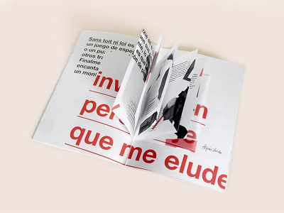 Sans Toit Ni Loi: Pressbook (insert)