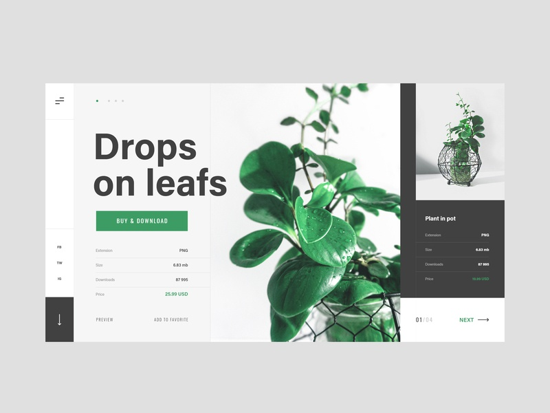#6.1 Photo & Design photographer photograhy photo flower portfolio pot green sell buy nature plants plant slider minimalism flat homepage design website ux ui